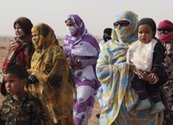 Sahara : le Plan d'autonomie a enclenché un débat sans précédent à Tindouf